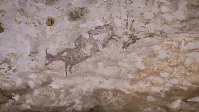 Descoberta na Indonésia a pintura rupestre mais antiga da humanidade