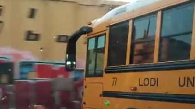 Autocarro escolar quase foi abalroado por comboio de carga nos EUA