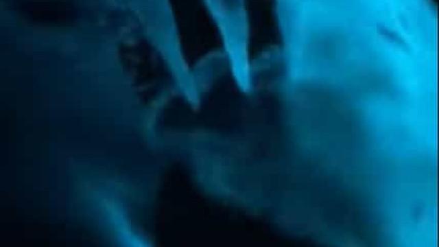 Plâncton iluminou à noite baía na Austrália