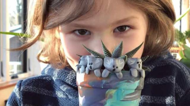 Austrália. Menino de 6 anos angariou 228 mil euros com coalas de barro