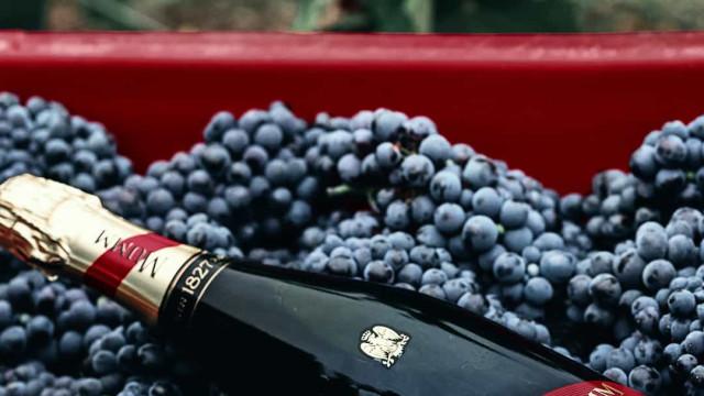 G.H. Mumm: O champanhe perfeito para o Dia do Pai