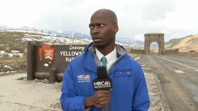 Repórter tem reação hilariante ao ver manada de bisontes a aproximar-se