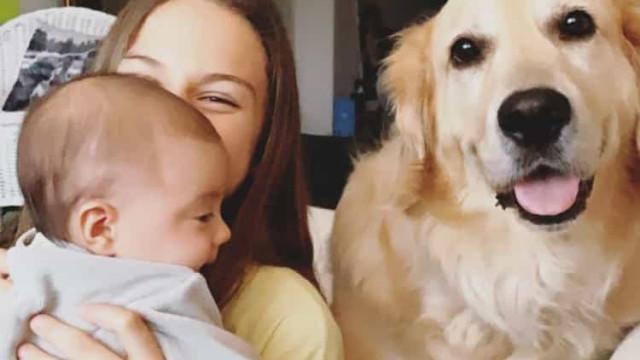 """Vídeo: 'Cãopanheiro' de Cláudia Vieira """"já adotou"""" filha bebé da atriz"""