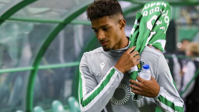 Wolverhampton quer levar Rodrigo Fernandes de Alvalade