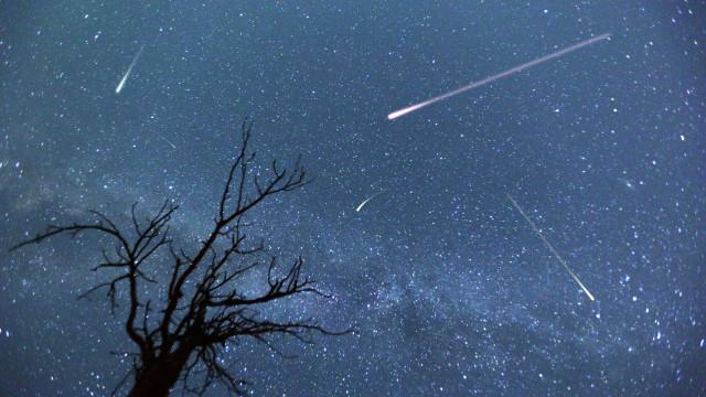 Chuva de meteoros. Saiba a melhor hora para assistir ao fenómeno