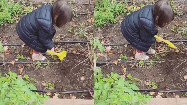 Andreia Rodrigues destaca carinhoso vídeo da filha... na horta