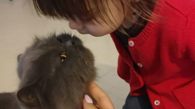 Filha de Sara Barradas é apaixonada por animais. Estas fotos são a prova