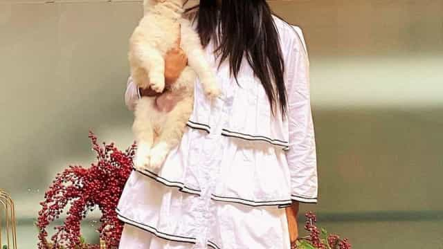 Rita Pereira leva o novo cãozinho para reunião na TVI