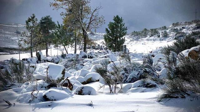 Portugal mantém-se com 'manto branco' a Norte. As impressionantes imagens