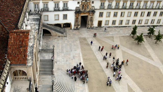"""Eliminar carne de vaca nas cantinas de Coimbra é """"cuidar do futuro"""""""