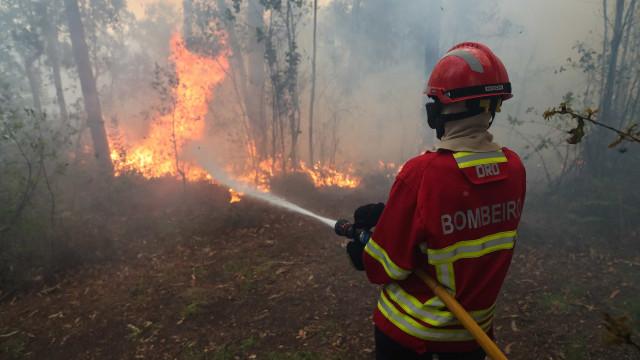 Mais de 60 concelhos de 11 distritos em risco máximo de incêndio