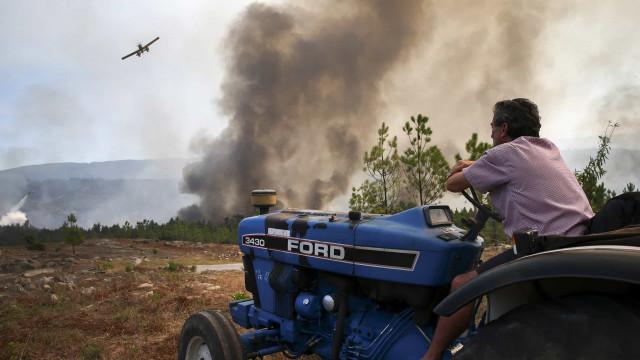PSD e PCP defendem política florestal comum na UE para evitar fogos