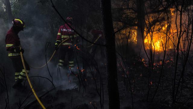 Dominado incêndio no concelho de Penedono