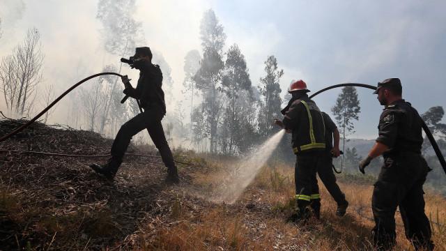 Maior parte do território do Algarve com risco máximo de incêndio