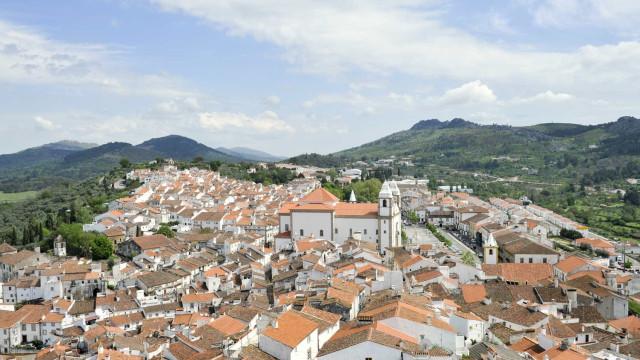 AO MINUTO: Lares confinados em Castelo de Vide; Tubarões em risco
