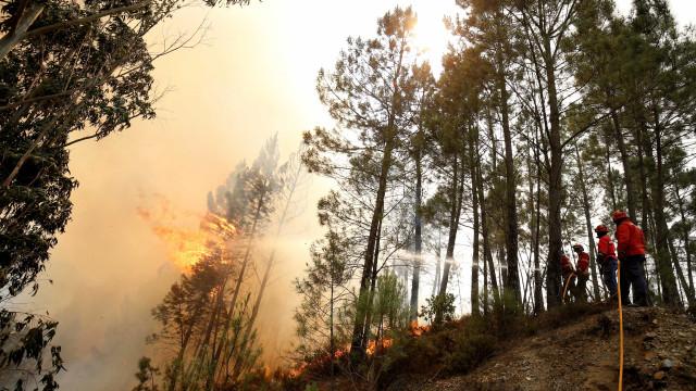 """Incêndio deflagra na Amadora. """"Chamas a 50 metros das casas"""""""