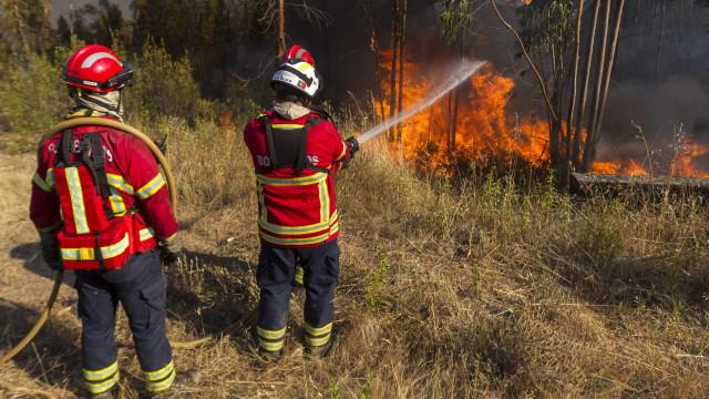 Fogo lavra em Perafita, Vila Real, em zona de mato sem acessos