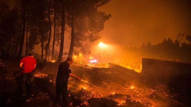 Distritos de Castelo Branco e Santarém em risco máximo de incêndio
