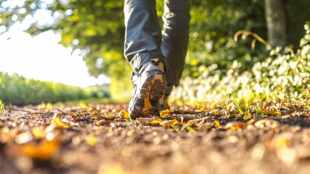 Adeus, verão. Outono chega amanhã pela fresca... mas ainda quente
