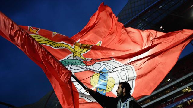 """Benfica queixa-se de relvado do Jamor e pede fim da """"caça ao Rafa"""""""