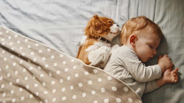 Dificuldade em acordar? Não está sozinho