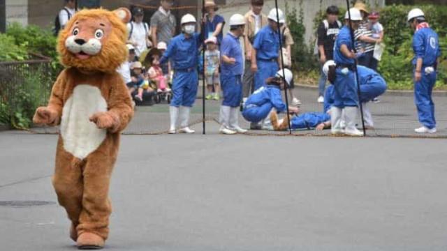 Zoo japonês treina para fuga de animais... com homem vestido de leão