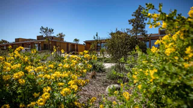 Tróia Eco-Resort quase terminado. Pestana lança compromisso sustentável