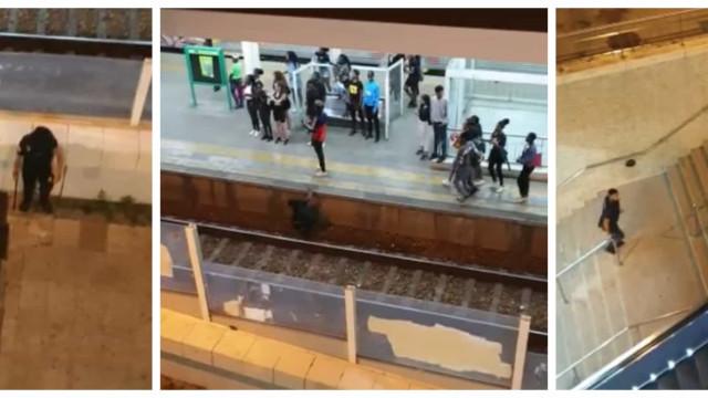 Vídeo: PSP disparou balas de borracha para travar apedrejamento