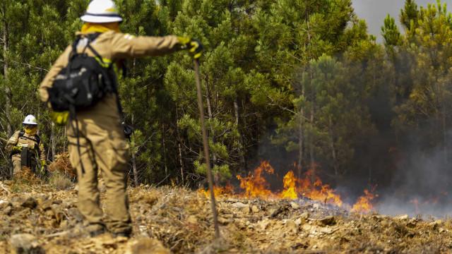 """""""Está em resolução 90% do incêndio"""" mas """"a tarde vai trazer dificuldades"""""""