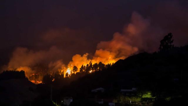 Incêndio na Grã Canária fora de controlo. Mais de 5.000 pessoas retiradas