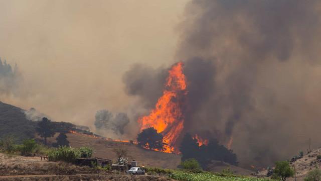 Cerca de oito mil pessoas retiradas devido a incêndio na Grã Canária