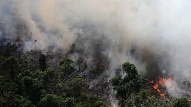 """""""A nossa casa está a arder"""". Incrédulo, o mundo olha para a Amazónia"""