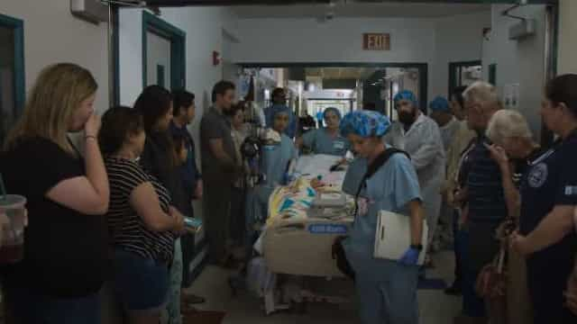 Acidente tira vida a menina cujos órgãos vão agora ajudar mais 80 doentes