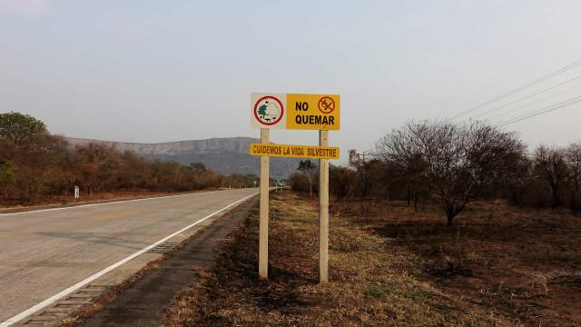 Incêndios já destruíram 950 mil hectares na Bolívia