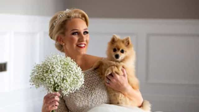 Noiva sobe ao altar com os oito cães com deficiência que resgatou