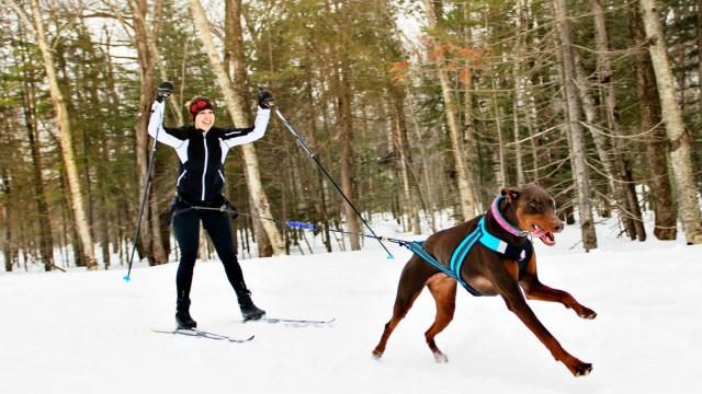 As melhores atividades (nada comuns) para o inverno