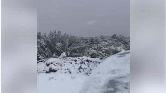Neve (já) cai e pinta de branco o Norte do país
