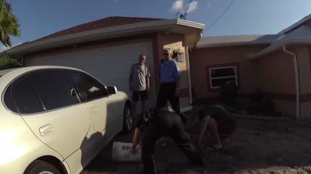 Pequeno jacaré escondido debaixo de carro assusta agentes da polícia