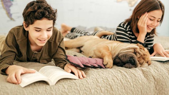 É Dia Mundial do Livro. Já tem um cantinho de leitura em casa?