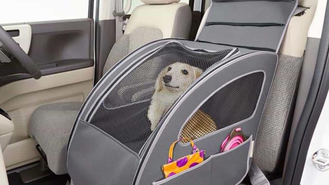 A nova invenção da Honda para transportar o seu cão no carro