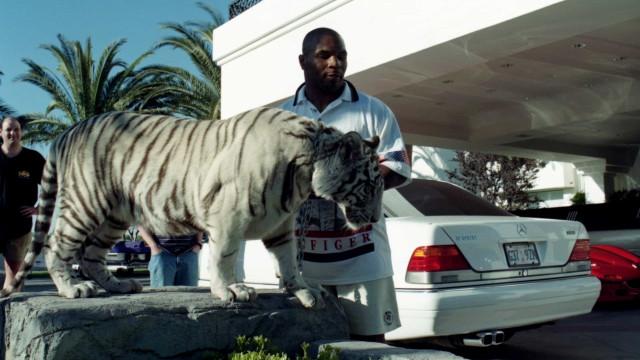 Myke Tyson conta como o seu tigre arrancou a mão a uma mulher