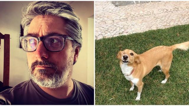 Nuno Markl emociona fãs ao despedir-se da sua cadela Uva