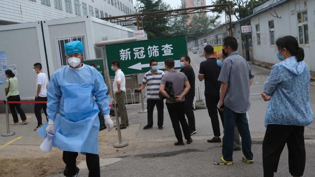 Cidade chinesa emite alerta após detetar caso suspeito de peste negra