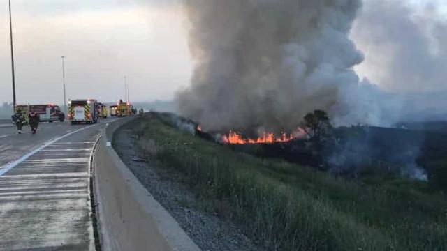 Pássaro voa contra cabo elétrico e provoca incêndio no Canadá