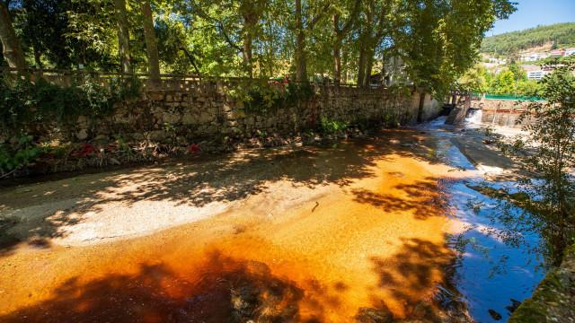 Análises ao rio Vizela indicam que estação de tratamento é foco poluidor