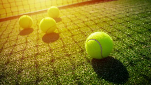 Eis os 10 tenistas que ganharam mais dinheiro na história