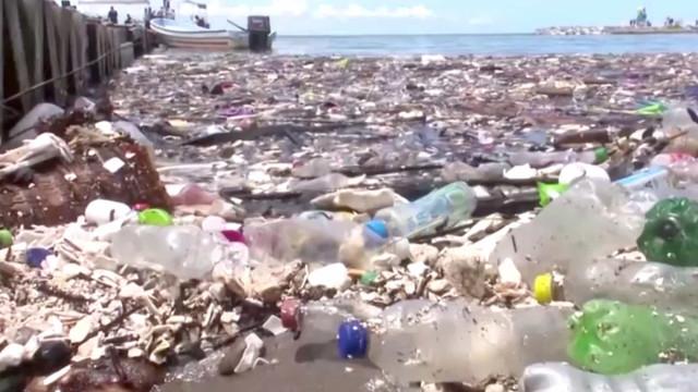 'Tsunami de lixo' invade praias cristalinas nas Honduras