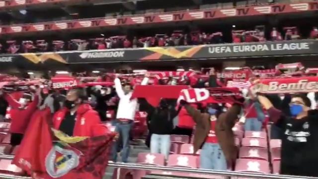 Adeptos do Benfica em êxtase no regresso às bancadas da Luz