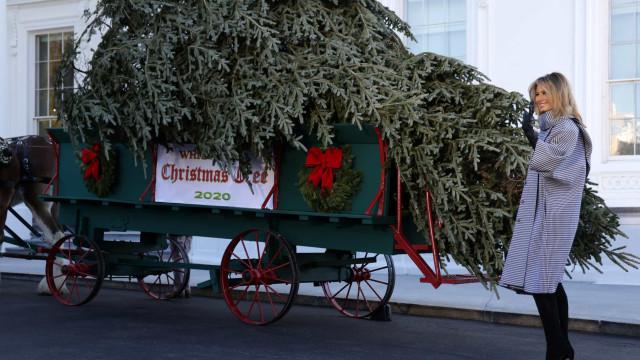 Árvore de Natal chegou (de charrete) à Casa Branca. Melania foi recebê-la