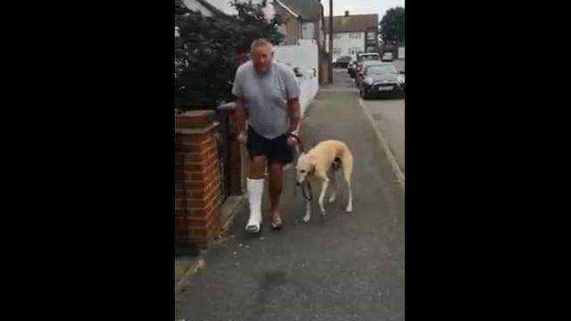 Homem paga 330 euros em veterinário e descobre que cão está só a imitá-lo